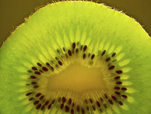Juicy Kiwi Slice Stock Photography