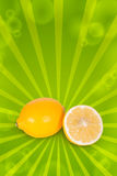 Juicy lemon Royalty Free Stock Image