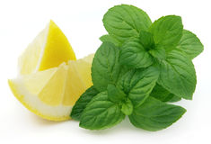Juicy lemon with mint royalty free stock images