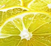 Juicy Lemon Slices. A macro shot of juicy lemon slices Royalty Free Stock Image