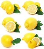 Juicy lemon. On a white background Stock Photography