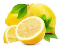 Juicy lemons isolated on the white background Stock Photos