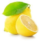 Juicy lemons isolated on the white background Royalty Free Stock Photo