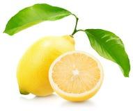 Juicy lemons isolated on the white background Stock Images