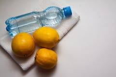 Juicy lemons Royalty Free Stock Photography
