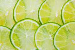Juicy lime background Stock Image