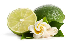 Juicy lime with its flowers Royalty Free Stock Photo