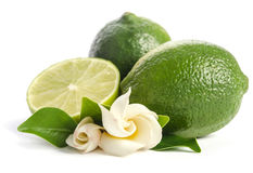 Juicy lime with its flowers Royalty Free Stock Image