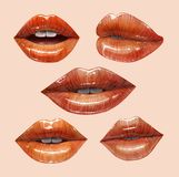 Juicy lips set. Sensual juicy lips collection. Mouth set. Vector lipstick or lip gloss 3d realistic illustration Royalty Free Stock Photos