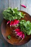 Little radish on a wooden table. Juicy little long radish on a wooden table Stock Photography