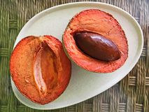 Juicy Mamey Sapote Fruit, Sliced in Half royalty free stock image
