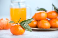 Juicy mandarins with green leaves. Fresh tangerines on a white background with glass jar. Juicy mandarins with green leaves orange clementine fruit citrus ripe stock image