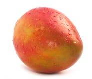 Juicy Mango Stock Images