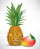 Juicy mango and pineapple Royalty Free Stock Photos