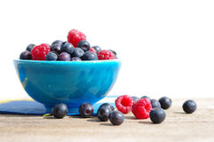 Juicy mature berries of raspberry and bilberry in a small blue bowl Royalty Free Stock Photos