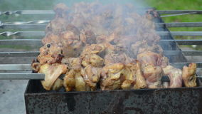 Juicy meat bake closeup stock footage
