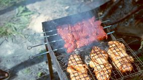 Juicy meat is fried on a grill. Chicken and beef in smoke stock video footage