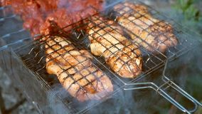 Juicy meat is fried on a grill. Chicken and beef in smoke stock video