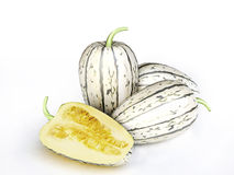 Juicy Melons Royalty Free Stock Images