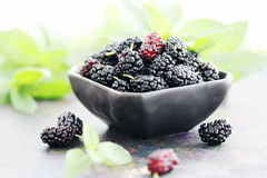 Juicy mulberry on a black plate Royalty Free Stock Image
