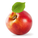 Juicy nectarine with leaf Royalty Free Stock Photo