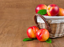Juicy nectarines in the basket Stock Photography