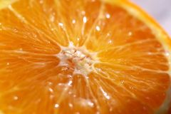 Juicy orange. Sliced juicy orange. Focus on the center Stock Photos