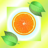 Juicy orange with leaves Royalty Free Stock Photo