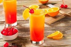 Juicy Orange and Red Tequila Sunrise Stock Photos