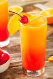 Juicy Orange and Red Tequila Sunrise Royalty Free Stock Photography