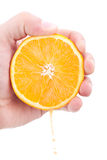 Juicy orange section in hand Stock Photo