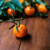 Juicy orange tangerines on a old wooden table Royalty Free Stock Photos