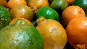 Juicy Oranges. A closeup view of bunch of good and fresh oranges stock images