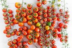Juicy organic Cherry tomatoes  over white background Stock Image