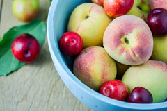 Juicy peaches and apricots Royalty Free Stock Photos