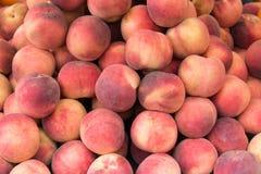 Juicy peaches Stock Photos