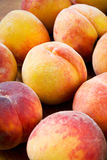 Juicy peaches Stock Photography