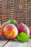 Juicy peaches Stock Image