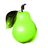 Juicy pear with a spine and a petal from a branch. Royalty Free Stock Photography