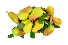 Juicy pears in a basket. Isolated without a shadow. Top view. stock images
