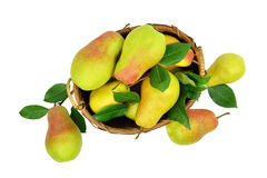 Juicy pears in a basket. Isolated without a shadow. Top view. stock photos