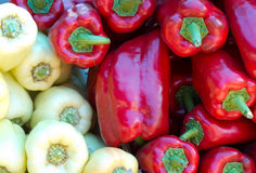 Juicy peppers Stock Photos