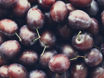 Juicy plum on the table Royalty Free Stock Photography