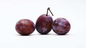 Juicy plums in detail. Plums and apples on white background Stock Image