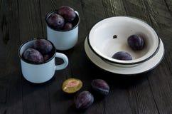 Juicy plums in enamelware stock image