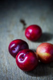 Juicy plums Stock Photography