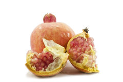 Juicy pomegranate Stock Image