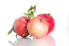 Juicy pomegranate Royalty Free Stock Photos