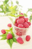 Juicy raspberries Royalty Free Stock Images