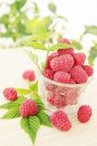 Juicy raspberries Royalty Free Stock Images